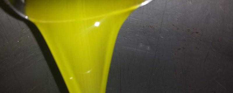 domande e curiosità sull'oliio extra vergine