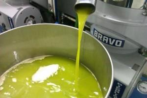 scelta olio pugliese o toscano