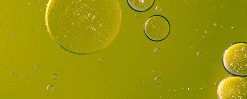 Quando il livello dei trigliceridi è indice di buona qualità dell'olio?