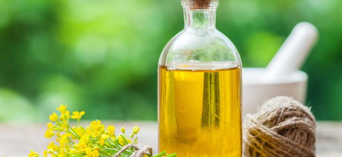 Omega 3 e Omega 6: gli acidi grassi essenziali presenti nell'olio extra vergine di oliva