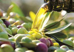 da cosa dipende la qualità dell'olio extravergine di oliva