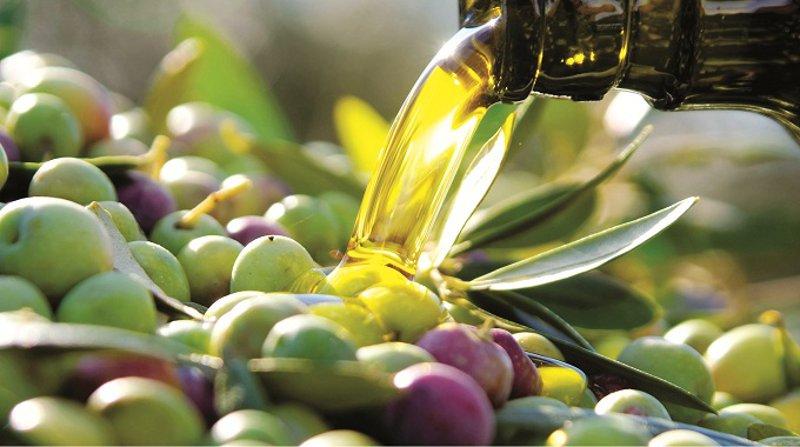 La qualità dell'olio: ecco le 9 domande dei consumatori