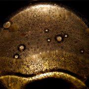 trigliceridi olio oliva cosa sono
