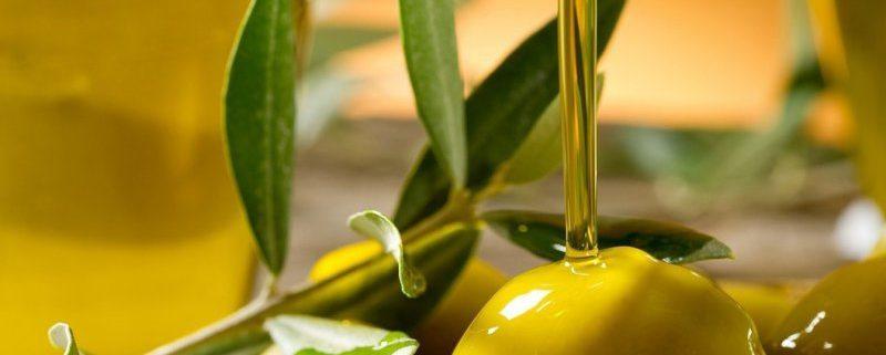cosa si intende per olio biologico e come si produce?
