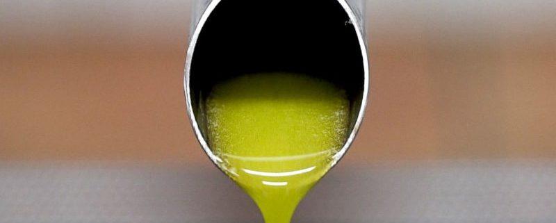 differenza tra olio monocultivar e blend