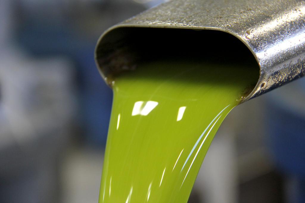 Vuoi prenotare l'olio in frantoio? Ecco qualche consiglio!
