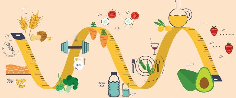 Olio Evo e Metabolismo: una somma di energie!