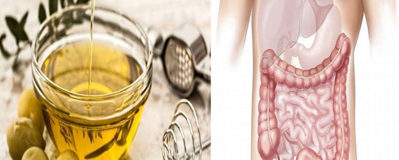 L'Olio di Oliva contrasta i tumori intestinali: la nuova scoperta!