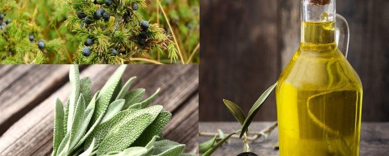 Olio Aromatizzato alla Salvia e Mirto fatto in casa