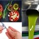 Nell'olio d'oliva la molecola contro il diabete: la scoperta dei ricercatori de La Sapienza