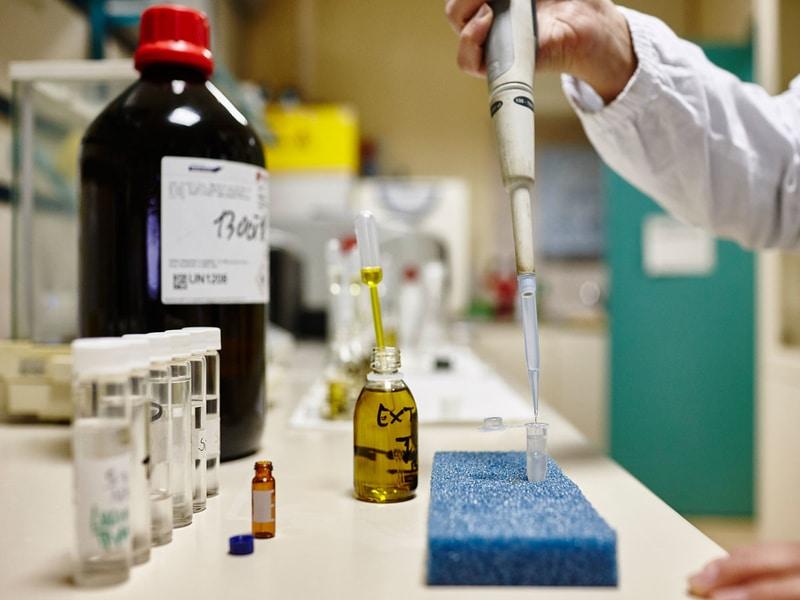 Resa olive - chimica-online