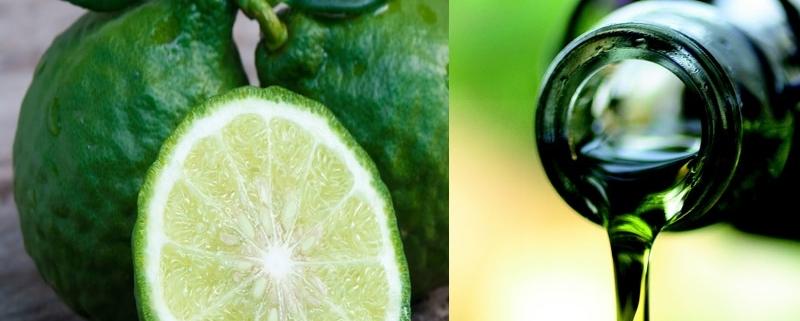 Olio di oliva e Bergamotto: utili per la Terapia del Dolore