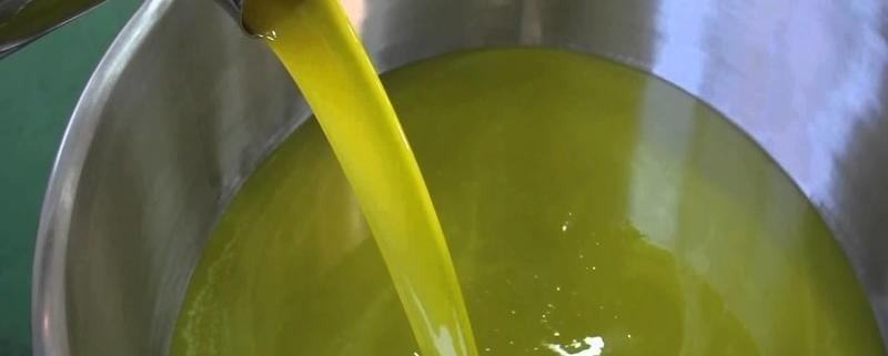 Gli ultrasuoni nel processo di estrazione dell'olio extravergine di oliva