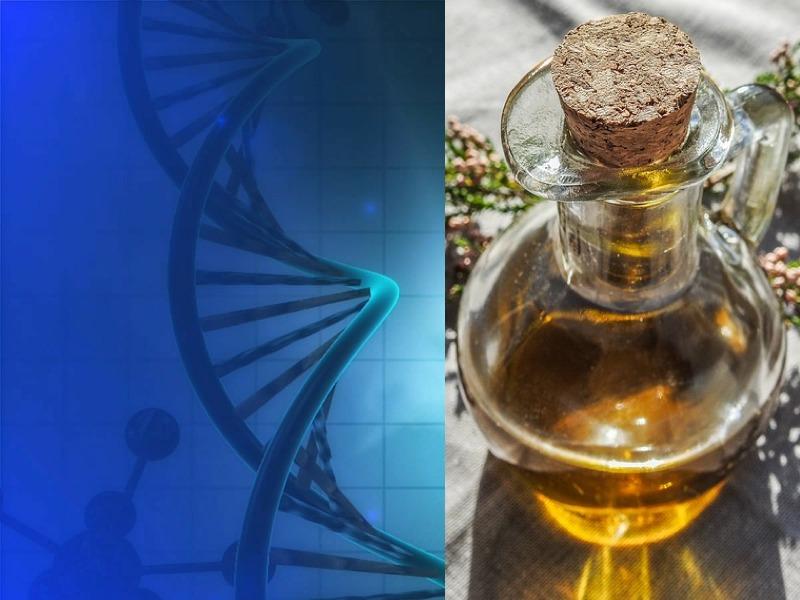 Test del DNA dell'olio: addio alle contraffazioni!