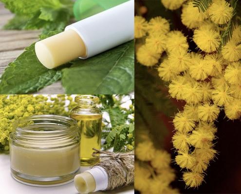 Balsamo Labbra all'Olio di oliva e Cera di Mimosa