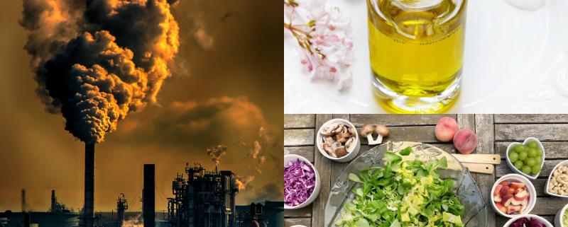 La Dieta Mediterranea ci protegge dall'Inquinamento