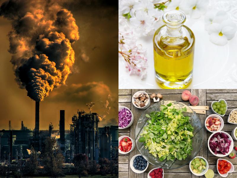 Ecco come la Dieta Mediterranea ci protegge dall'Inquinamento