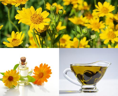 Olio di Arnica come rimedio naturale contro contusioni ed ecchimosi