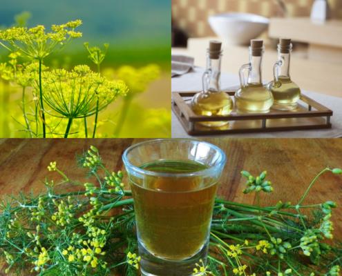 Olio di oliva aromatizzato al finocchietto selvatico