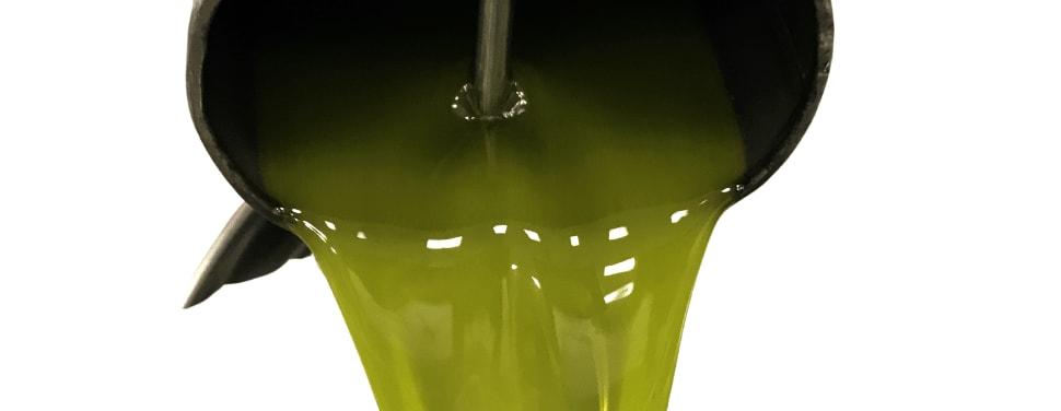 olio biologico confezionato in frantoio
